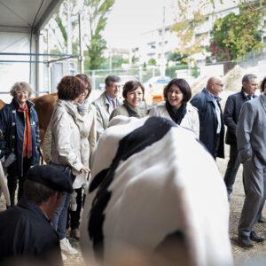 delga carole député PS toulouse
