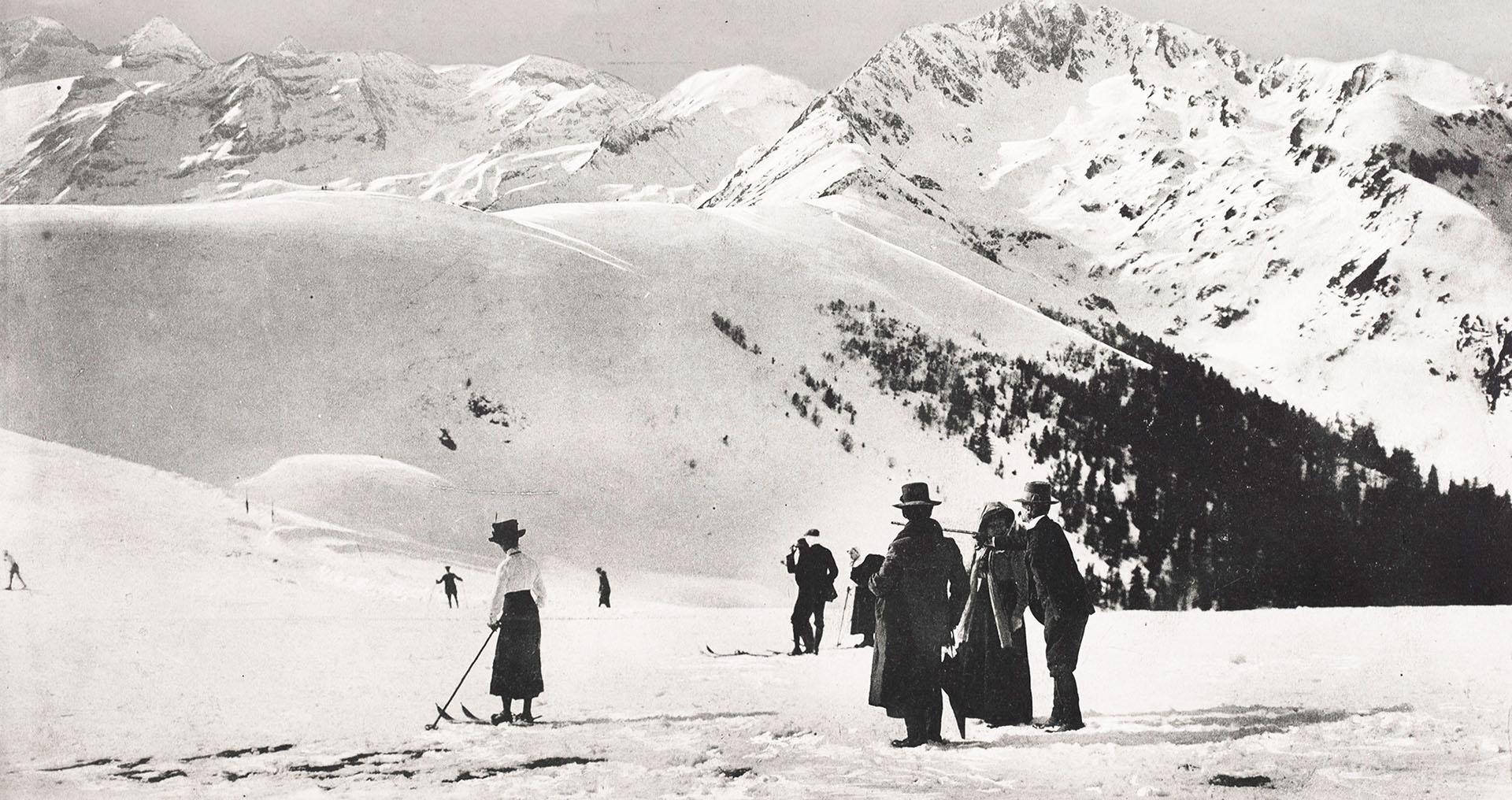 Pyrénées, les pionniers de l'or blanc